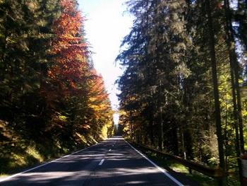 Cazare Pasul Bucin - Pensiunea Musetel - Judetul Harghita