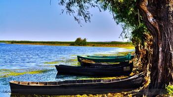 Cazare Delta Dunarii - Loc. Vulturu - Pensiunea Aqua Villa