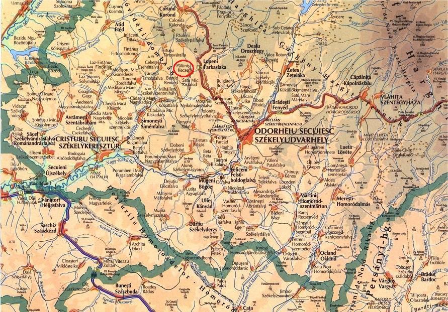 Paltinis Judetul Harghita Transilvania Bazinul Carpatic