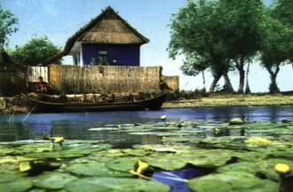 Turism Delta Dunarii Cazare